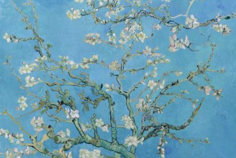 Vincent van Gogh: Mandulavirágzás