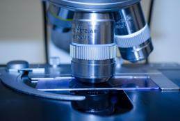 A homeopátiás extrém magas hígítások új, rájuk jellemző fizikokémiai tulajdonságokra tesznek szert a potenciálási folyamat eredményeként.